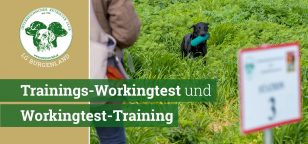 ÖRC_LG-Burgenland_Trainings-Workingtest-Training