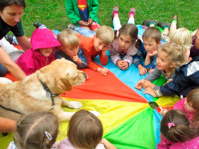 Therapiehunde_Mensch_und_Tier